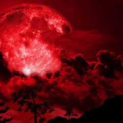 blood-moon-banner