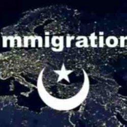 Muslim-Demographics1