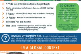 IG-Amazon-Pg 1